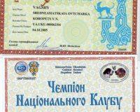 Вагши - чемпион Украины, национального клуба