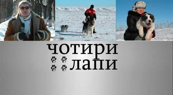 Кара Юлдуз на ТВ (видео)