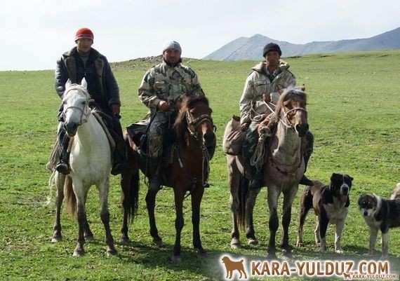 Video Tobets in Kazakhstan!